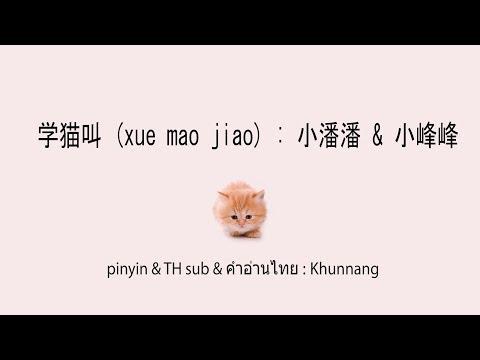 学猫叫 (xue mao jiao+ซับไทย+คำอ่านไทย) : 小潘潘 & 小峰峰 \ pinyin & TH sub : Khunnang