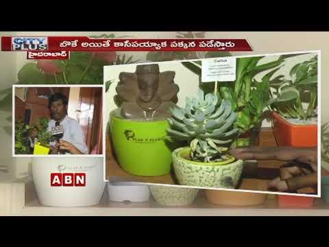 People Showing Interest On Interior Plants | Telangana Latest News | City Plus | ABN Telugu