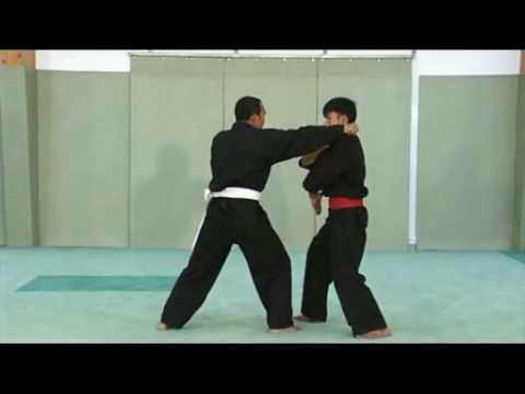 Sport de combat indonésien