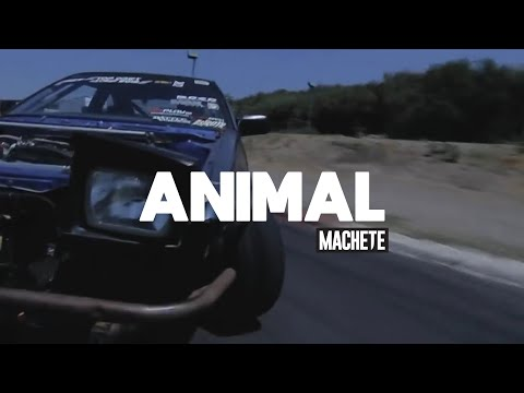 LANDIN WILLIAMS | Animal - Drifting with Ryan Litteral