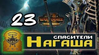 Цари Гробниц прохождение Total War Warhammer 2 за Архана Черного - #23