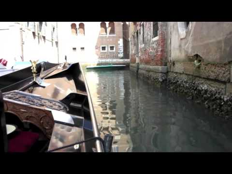 Canal Rides, Vinyards, Fashion, Puppies, Pasta - This is Europe