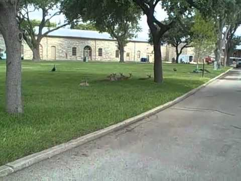 Video tour of Fort Sam Houston  - IMCOM Family MWR Public Affairs 110615