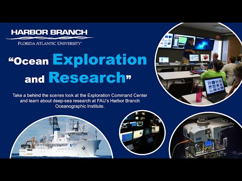 Ocean Exploration And Research At FAU's Harbor Branch