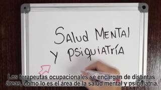 Terapia Ocupacional Salud Mental y Psiquiatría