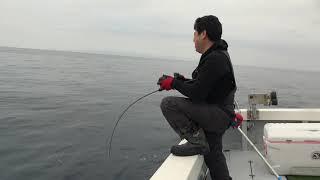 2019.1.30 場所は福岡県糸島市から出港の遊漁船「勝吉丸」で 七里ケ曽根へ向かいました。 今回の目的はプロトのパワースロージギング用ロッドの...