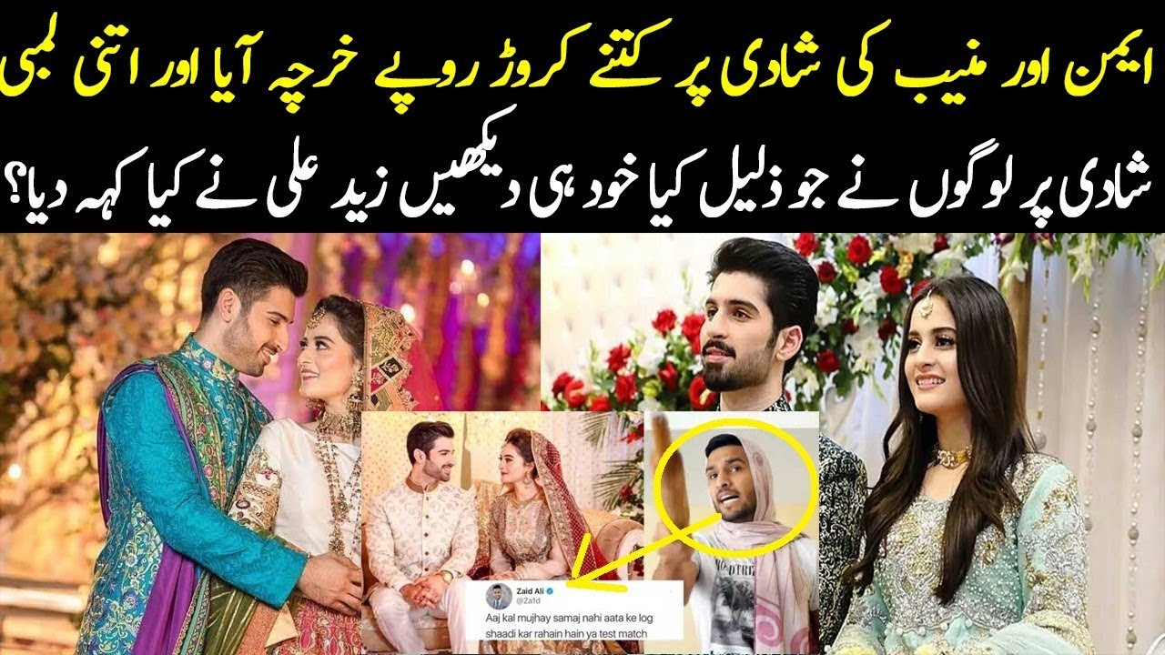 Famous Youtuber Zaid Ali Criticize To Aiman Khan And Muneeb Butt