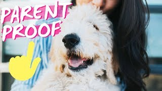 GET A NEW DOG 🐶 Convince Parents to Say YES! 🎉