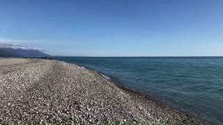 Настоящая Весна в Сочи☀️ Море в Марте 2019🌴