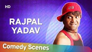 Rajpal Yadav Comedy - Hit Comedy Scenes - (राजपाल यादव हिट्स कॉमेडी) - Shemaroo Bollywood Comedy