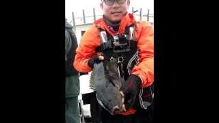 [Namanak] G.D caught big Opaleye.