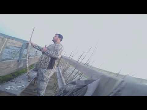 Teal Hunt 2017 Central Louisiana