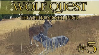 Wolf Quest 🐺 Boss Pack of Amethyst Mountain - Episode #5
