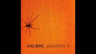 Calibre -  Off Key - Shelflife 3 - Signature Recordings