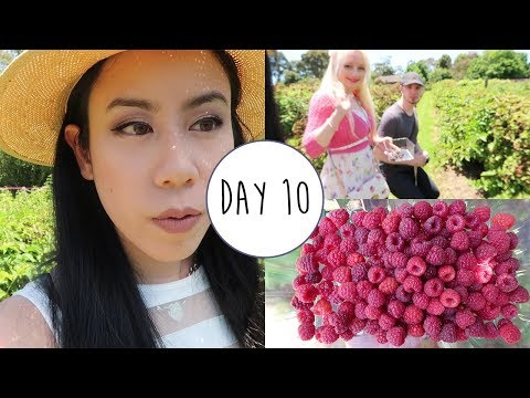 Raspberry Picking at the Bramble Farm~ Day 10 ~ Once Upon a December 2017