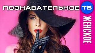 Анатолий Некрасов Как стать настоящей женщиной