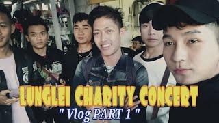 concert vlog