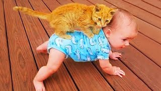 Funny Cat Videos   Baby and Cat Fun and Cute  Funny Baby Videos