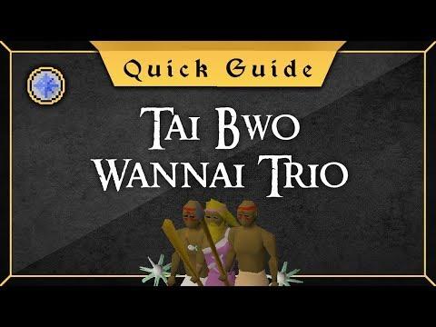 [Quick Guide] Tai Bwo Wannai Trio (NOT For Ironmen)