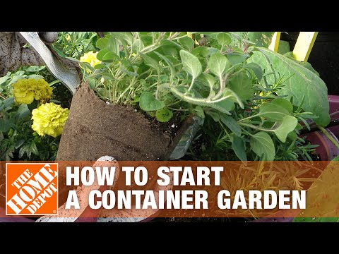 how-to-start-a-container-garden-|-the-home-depot