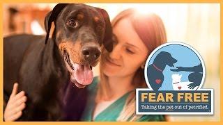 Fear Free: A Transformative Initiative for Veterinary Professionals