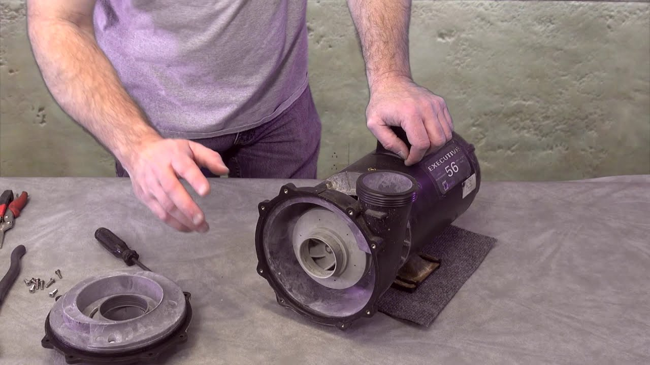 hight resolution of spa hot tub waterway executive pump seal impeller bearing replacement how to the spa guy 315 1220 youtube