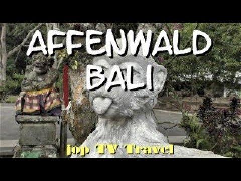 Rundgang Durch Die Affenwaldattraktion Obyek Wisata Sangeh In 6 Minuten Bali  Jop TV Travel
