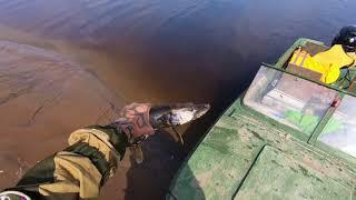 Рыбалка.В погоне за щукой Часть 2я