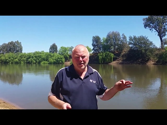 Fishing report 24 Oct 2019 - brought to you by Compleat Angler Wagga