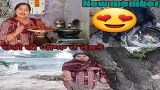 ਸਾਡੇ ਆਇਆ ਨਵਾਂ ਮਹਿਮਾਨ ਕੌਣ??by punjabi cooking and punjabi cultures