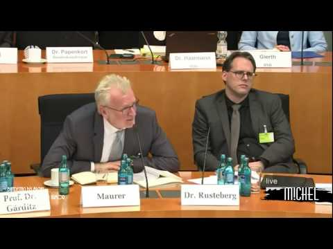 Bundestag : Ermittlung künftig auch ohne konkreten Verdacht - afd