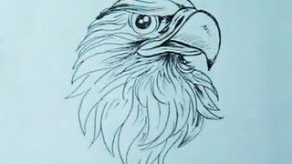 How to draw an Eagle Head with Pen