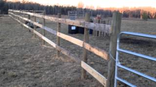 Prepper Life / Building Fence Cheap!. / Mr. Fix- All