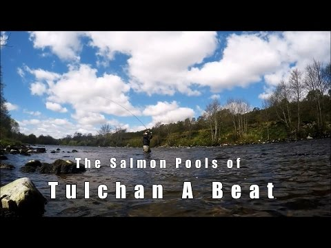 River Spey - Tulchan A Salmon Fishing