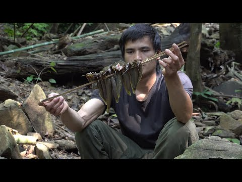 Fish and salt fruit, survival in the tropical rainforest, ep 75