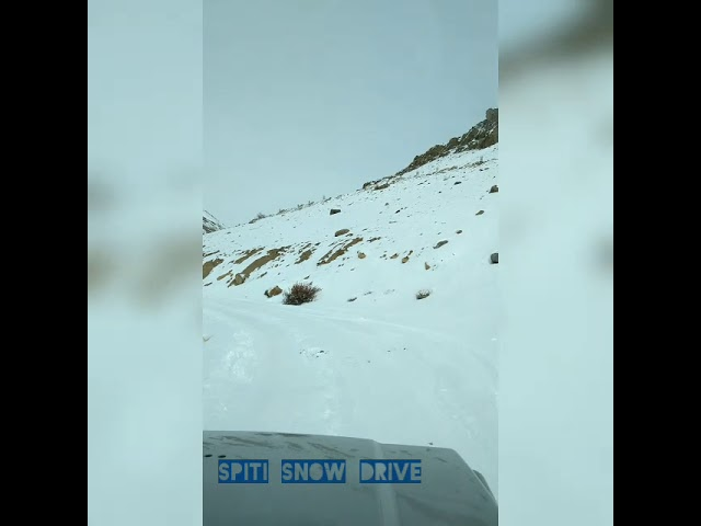 Key Monastery, Spiti Valley, Snow Drive 2019 Expedition #takemetohimalayas #snowdrive #spitiwinter