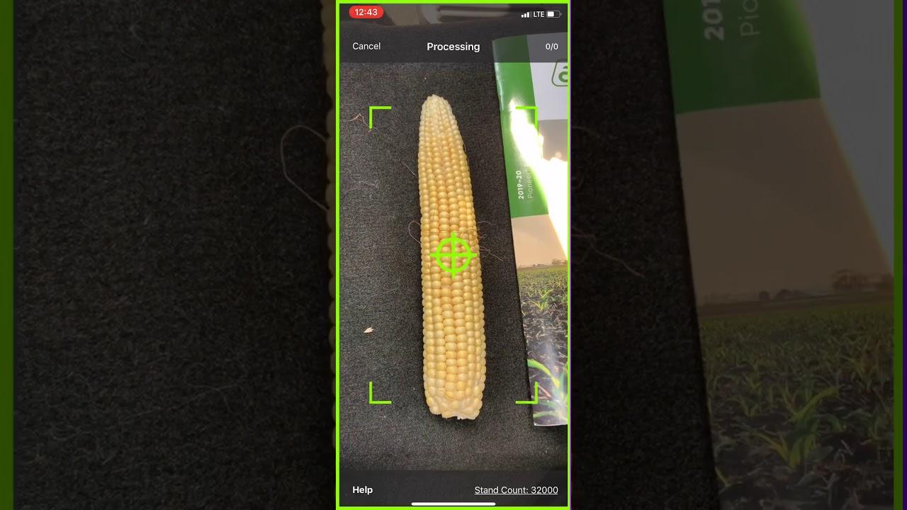 Pioneer Seeds App Yield Estimator