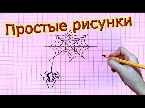 Простые рисунки # 60. Паук на паутине.