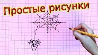 Простые рисунки # 60. Паук на паутине.(Как нарисовать простой рисунок обычной гелевой ручкой за несколько минут. Спасибо, что смотрите мои видео...., 2014-02-05T16:17:42.000Z)