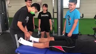 109運動推拿指壓學-徒手下肢推拿 林晉民老師
