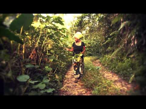 JAMAICAN HERBS : Health / Healing / Income