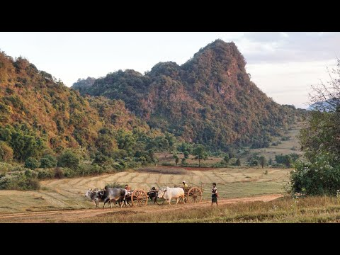 Myanmar Rural Life - Between Kalaw and Inle Lake