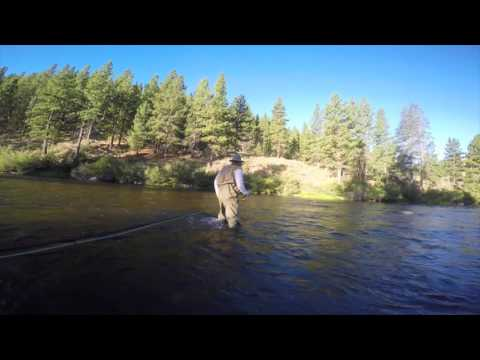 Fly Fishing the Truckee River