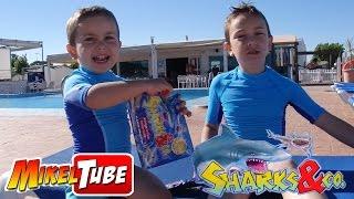 Abrimos SHARKS & CO. y jugamos con NERF de agua en la piscina del Camping thumbnail