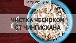 Чистка кишечника чесноком по методу Чингисхана в домашних условиях