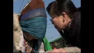 Repeat youtube video Монгол бөө ээжтэй нь нас барсан хүүг уулзуулав