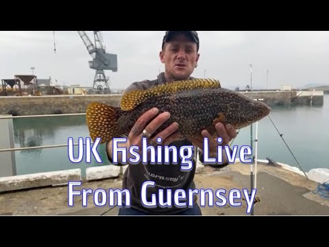 UK Fishing Live In Guernsey, Channel Islands🇬🇬🇬🇧