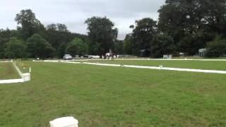 Felix eventing dressage champs 2