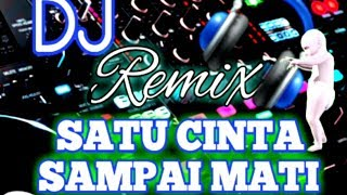 Download DJ REMIX SATU HATI SAMPAI MATI Mp3