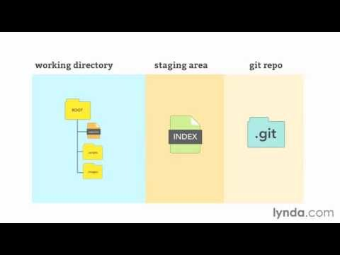 GitHub for Web Designers How Git works